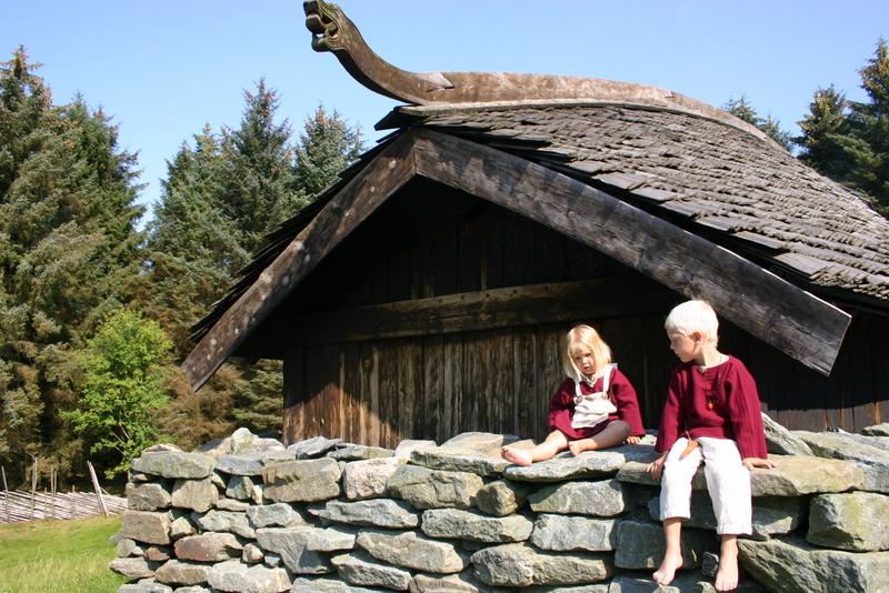Moje volba: Replika vikinské stavby
