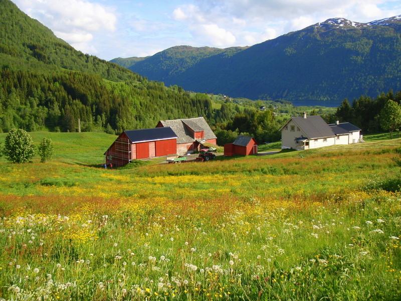 Moje volba: Okolí Bergenu