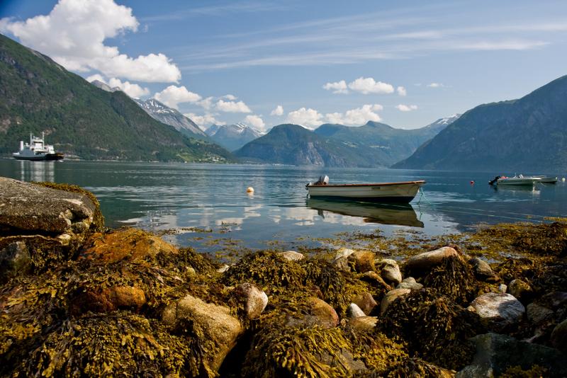 Moje volba: Trajektová linka ve fjordech